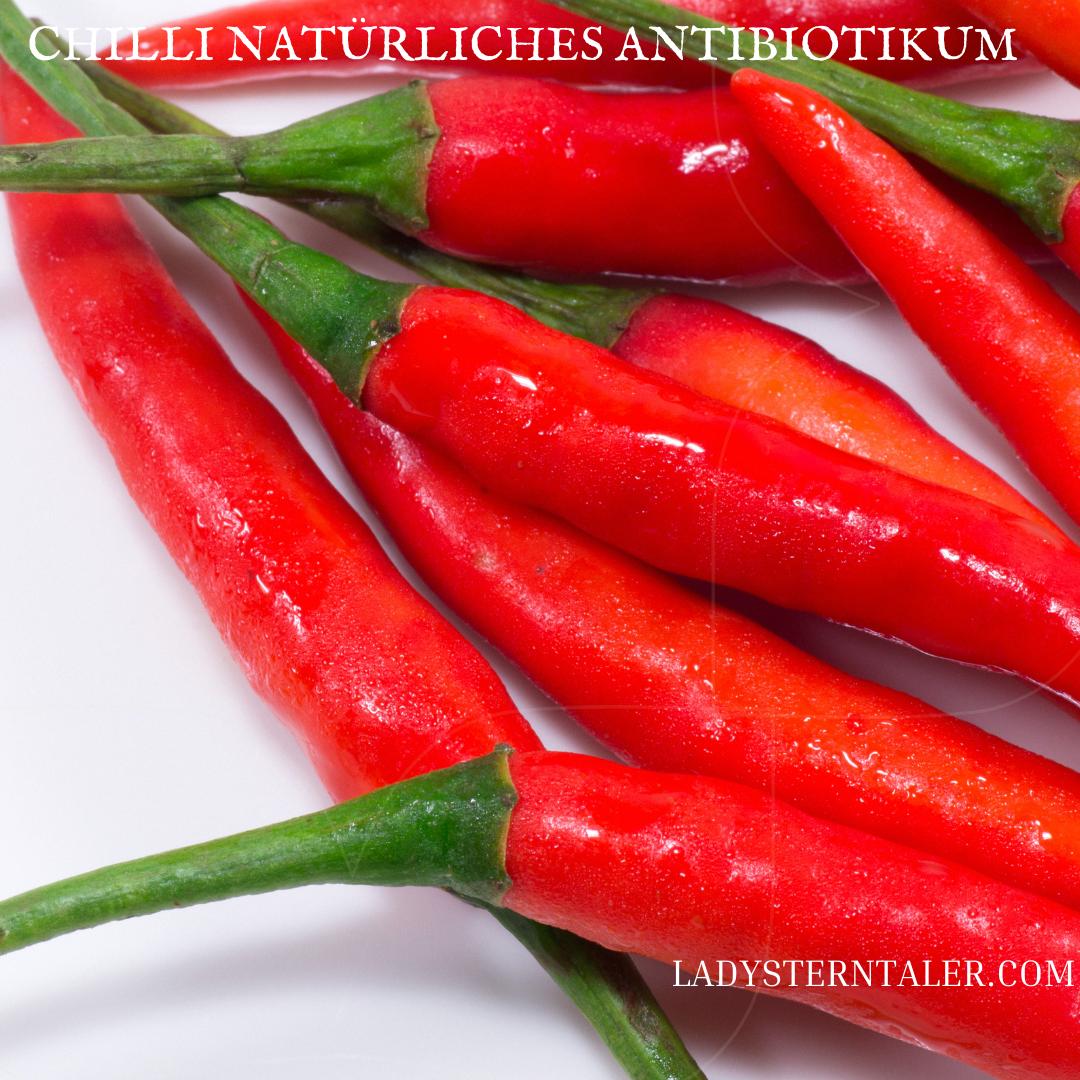 Chilli - natürliches Antibiotikum