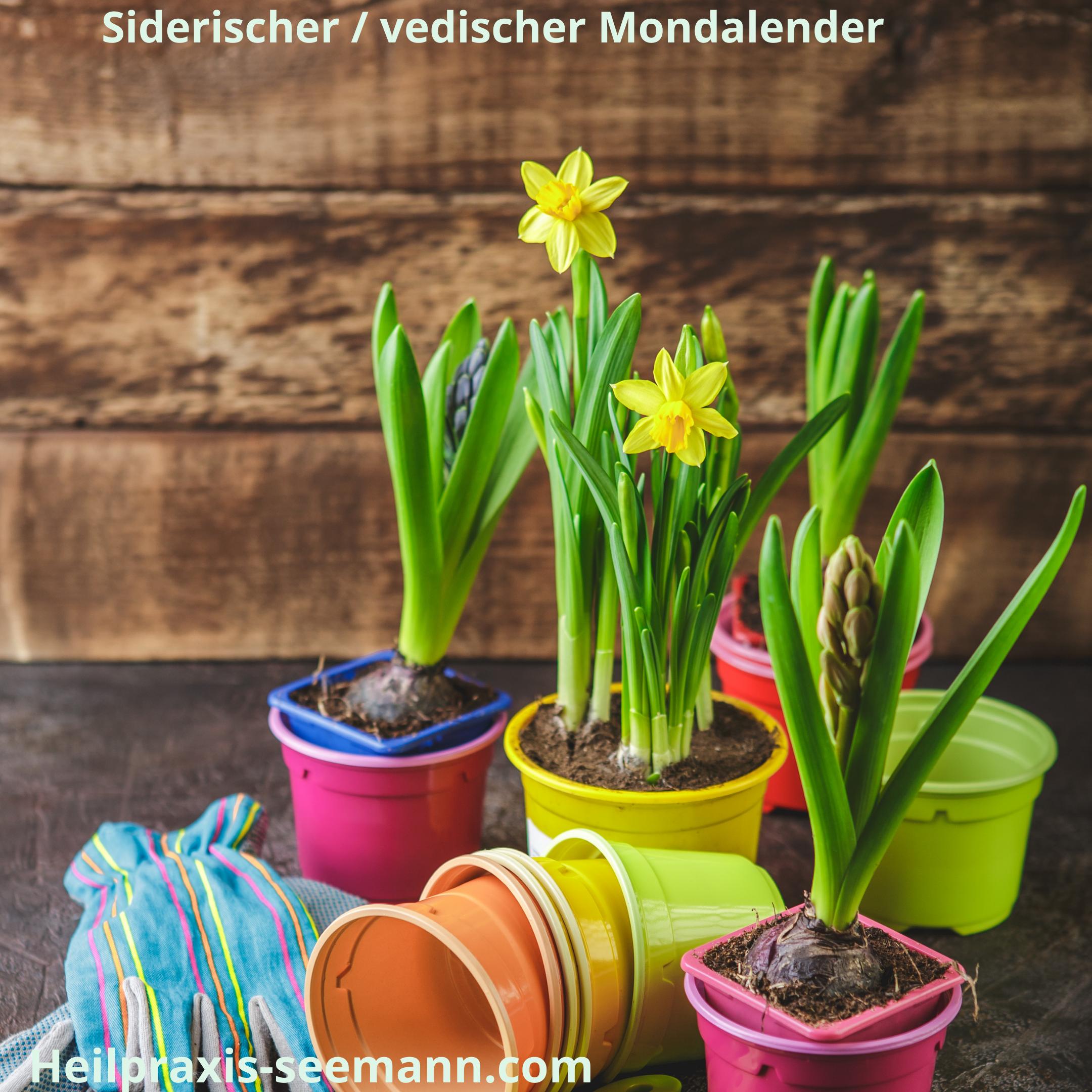 siderischer _ vedischer Mondkalender Widder (3)